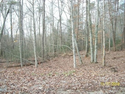 Grimsley Hills Tract 14