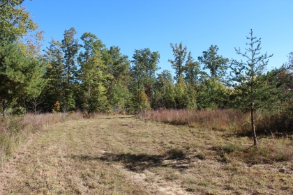 Goose Creek Estates Tract F