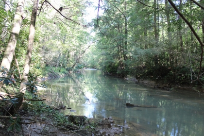 Paint Rock Creek Tract 36